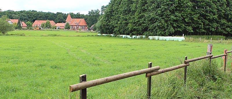 "Kein ""Modus vivendi"" am Poppelreunsgraben"