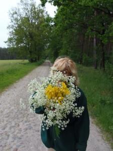 Kräuter, Blumen