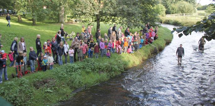 Bohlser Dorffest am 24. August mit Kuhfladen-Roulette
