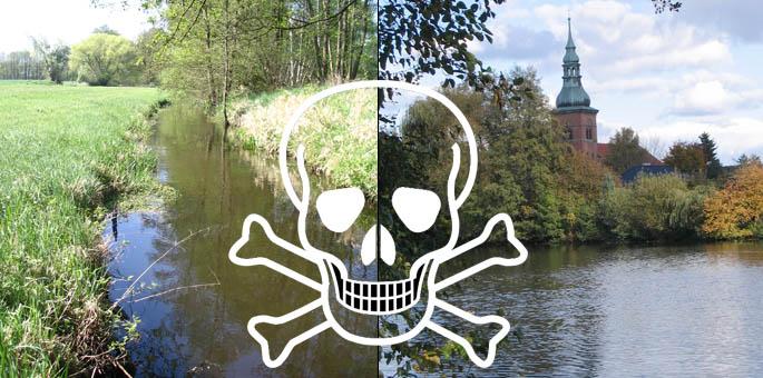 Brandbrief zur Verunreinigung von Aue und Seepark-See